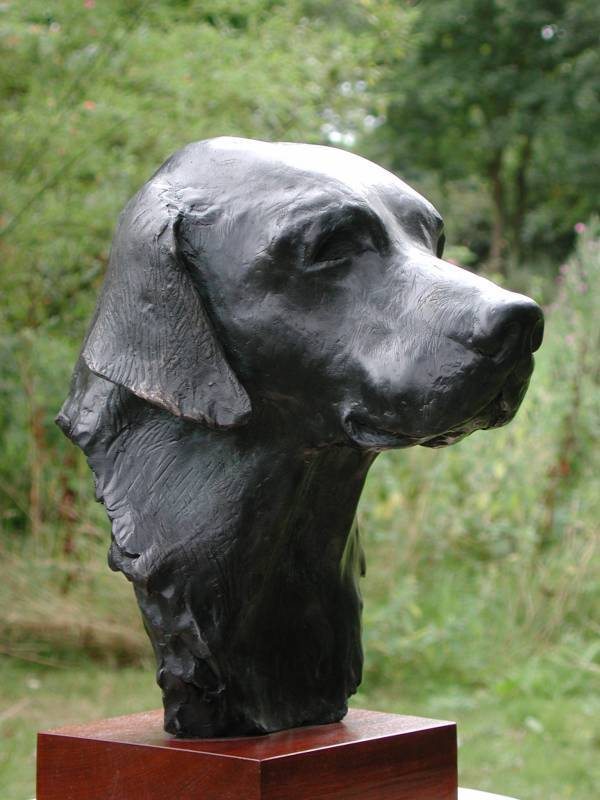 Bronze bust of a labrador retriever